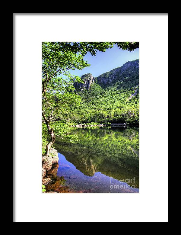 White Mountains Of New Hampshire Framed Print featuring the photograph Eagle cliff by Diana Nault
