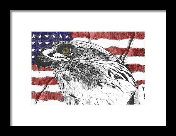 Patriotic Framed Print featuring the drawing Eagle by Nathaniel Hoffman