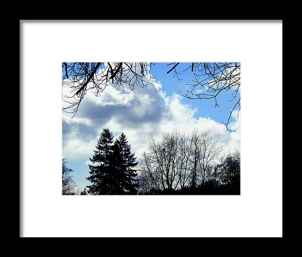 Eagles Nest Framed Print featuring the photograph Eagles nest in faraway tree by Lisa Rose Musselwhite
