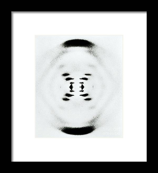 Deoxyribonucleic Acid Framed Print featuring the photograph Early Image Of Dna by Omikron