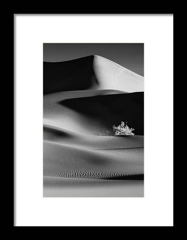 California Framed Print featuring the photograph Early Morning On The Sand by Jeff Clay