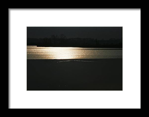 Ce Mcconnell Framed Print featuring the photograph Early Swim by C E McConnell