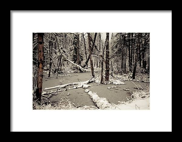 Scenic Framed Print featuring the photograph Early Winter by Todd Bissonette