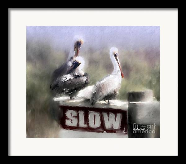 Seashore Birds Pelicans Tropical Humor Framed Print featuring the painting Easily Follows Directions... by Carolyn Staut