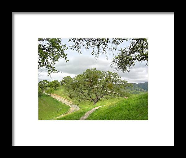 Landscape Framed Print featuring the photograph East Ridge Trail - Spring by Karen W Meyer