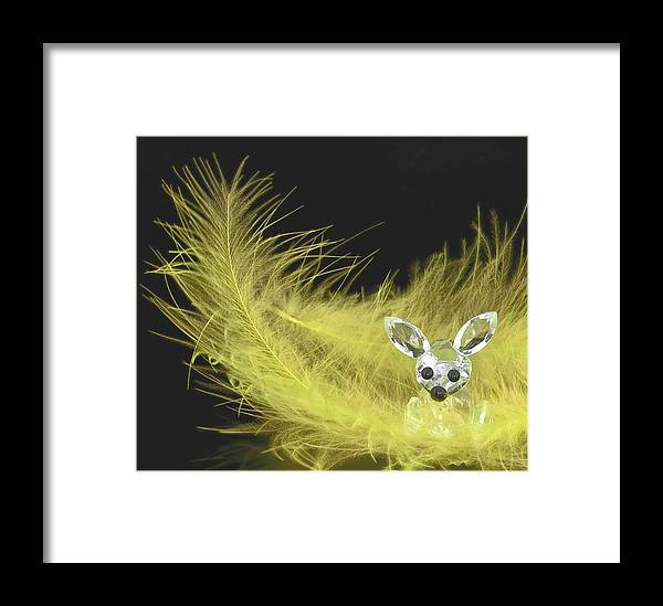 3d Framed Print featuring the photograph Easter Bunny by Svetlana Sewell