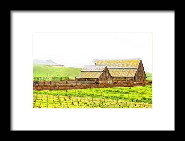 Vineyard Framed Print featuring the digital art Edna Valley Ranch by Patricia Stalter