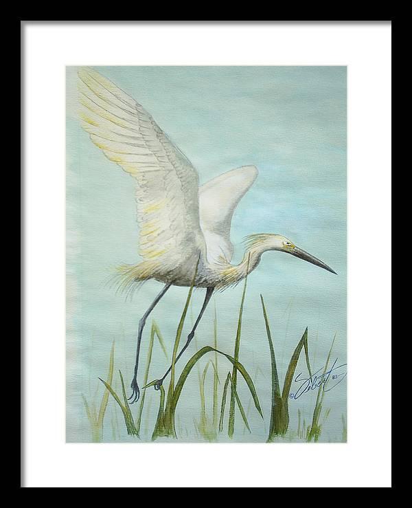 Bird Framed Print featuring the painting Egret In Flight by Dennis Vebert