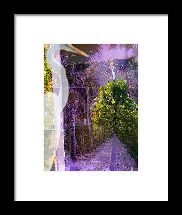 Egret Framed Print featuring the digital art Egret In Passing by Deborah Hildinger