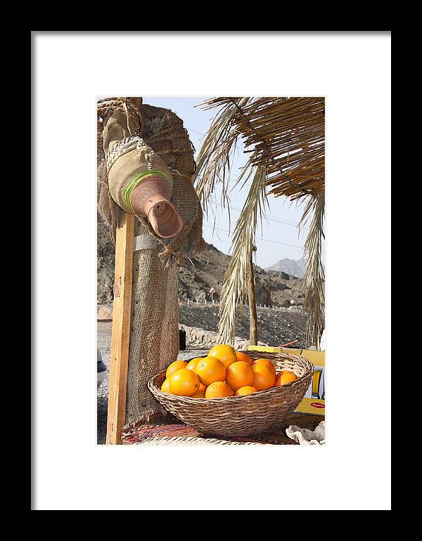 Egypt Framed Print featuring the photograph Egypt Oranges At The Oasis by Yvonne Ayoub