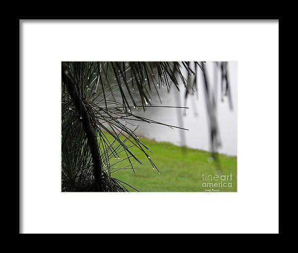 Lakes Framed Print featuring the photograph Elements by Greg Patzer