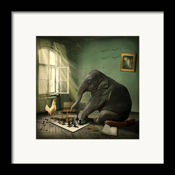 Elephant Framed Print featuring the photograph Elephant Chess by Ethiriel Photography