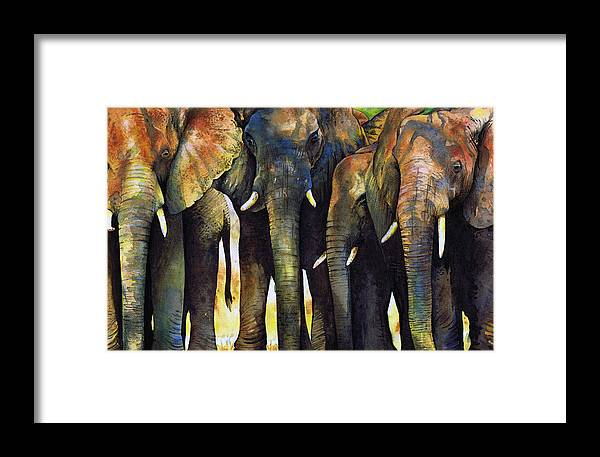 Elephant Framed Print featuring the painting Elephant Herd by Paul Dene Marlor