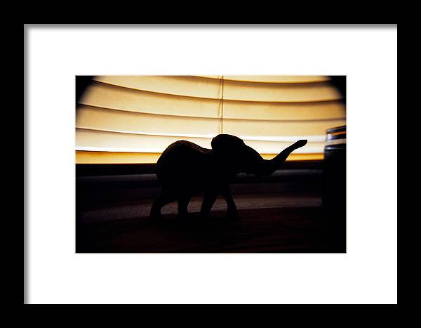Model Framed Print featuring the photograph Elephant by Tom Melo