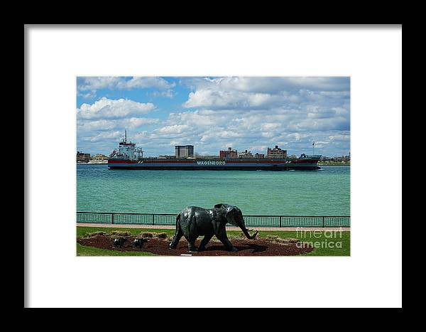Elephants Go A Marching Framed Print featuring the photograph Elephants Go A Marching by Rachel Cohen