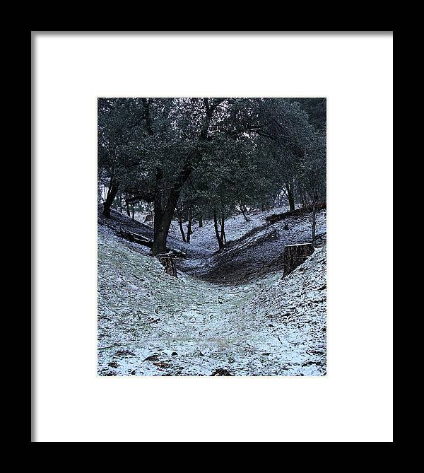 California Framed Print featuring the photograph Elevation 4500 Ft And Up by Viktor Savchenko