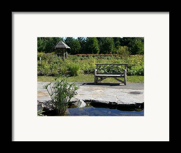 Bench Framed Print featuring the photograph Elm Bank - Bench by Nancy Ferrier