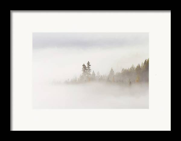 Fog Framed Print featuring the photograph Emergence by Mike Dawson