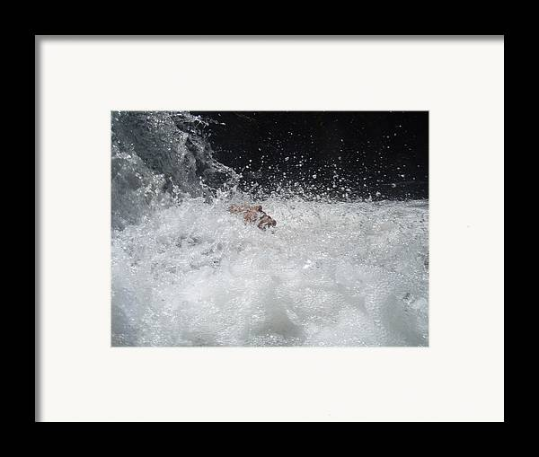 Water Framed Print featuring the photograph Emerging Face by Jessica Breen