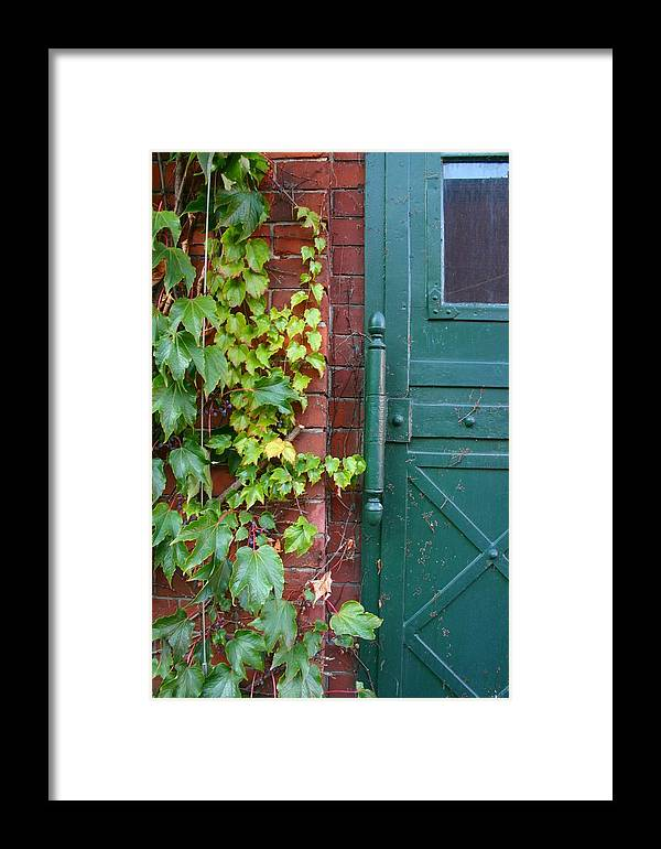 Vines Framed Print featuring the photograph Enter Vine Door by Minaz Jantz