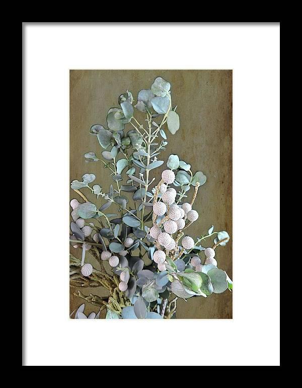 Eucalyptus Framed Print featuring the photograph Eucalyptus by Melissa Davis