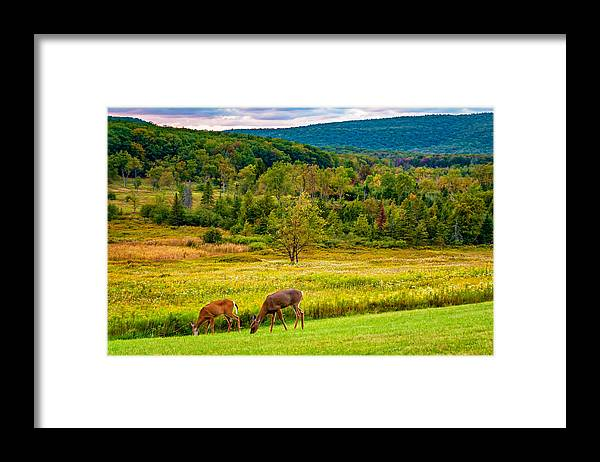 Canaan Valley Framed Print featuring the photograph Evening In The Valley 2 by Steve Harrington