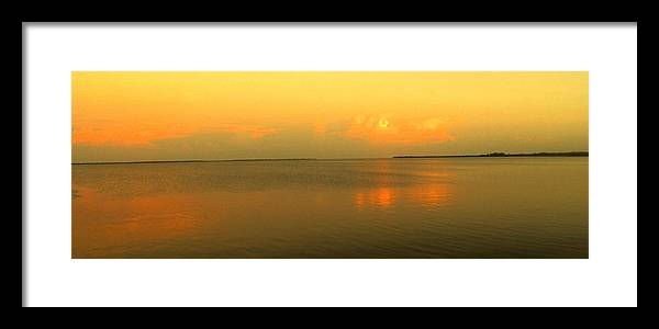 Florida Framed Print featuring the photograph Evening Shades by Ian MacDonald