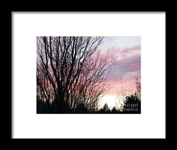 Sky Framed Print featuring the photograph Evening Sky - October 27 by Jackie Mueller-Jones