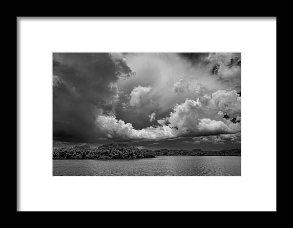 Everglades Framed Print featuring the photograph Everglades 0257bw by Rudy Umans