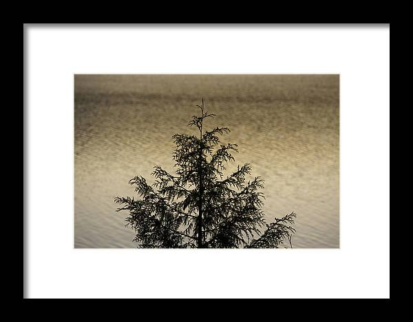 Lake Framed Print featuring the photograph Evergreen Lake by Richard Steinberger