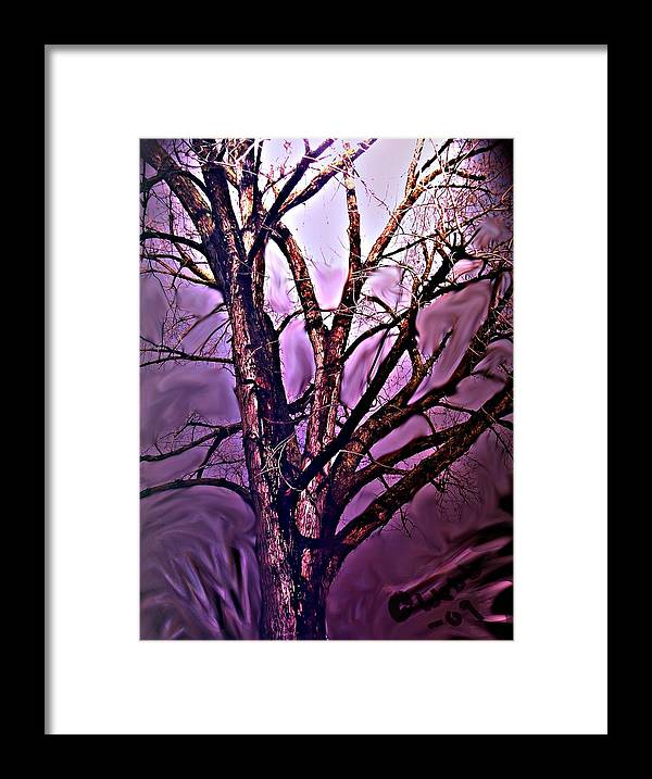 Woods Framed Print featuring the digital art Everlasting 2 by Crystal Webb
