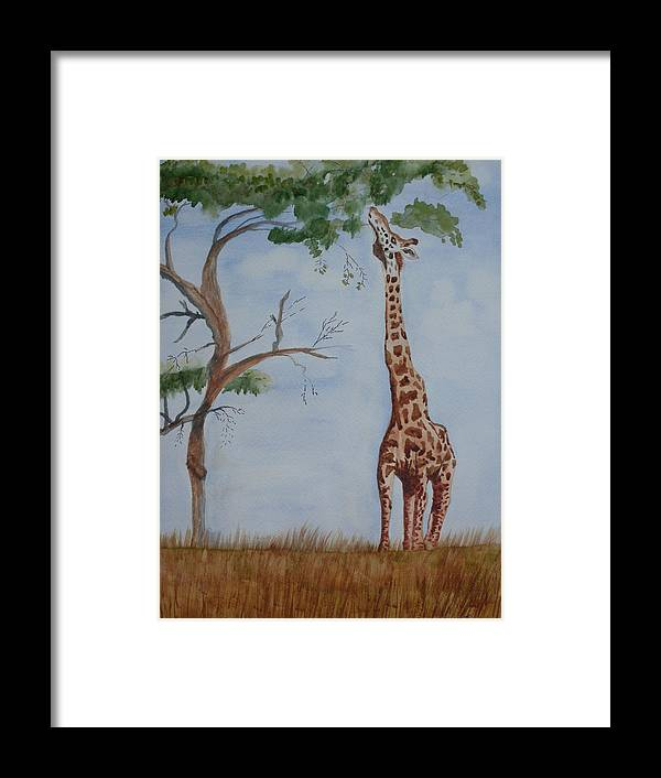 Landscape Giraffe Africa Tree Wildlife Framed Print featuring the painting Evolution's Early Stretch by Warren Thompson
