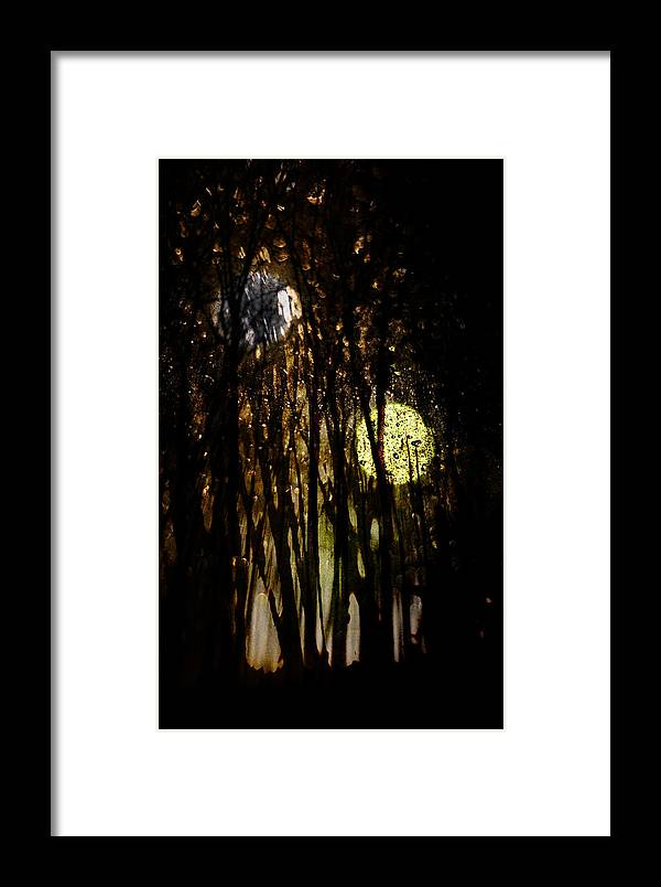 Digital Photography Framed Print featuring the photograph Evon 3 by Tony Wood