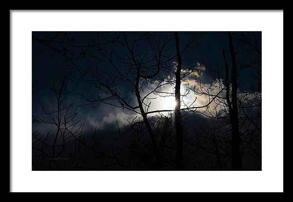 Exposing For The Light 2 Framed Print featuring the photograph Exposing For The Light 2 by Steven Poulton