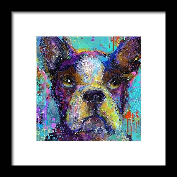Contemporary Framed Print featuring the photograph Expressive Boston Terrier Painting By by Svetlana Novikova