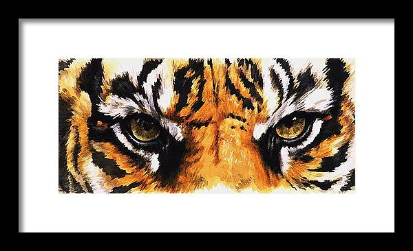 Feline Framed Print featuring the mixed media Sumatran Tiger Glare by Barbara Keith