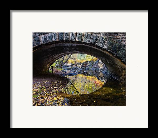 Eye Framed Print featuring the photograph Eye by Mary Amerman