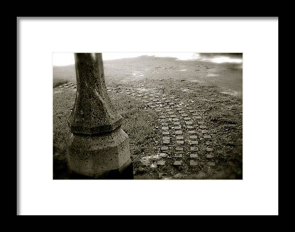 Black And White Framed Print featuring the photograph Fairy Paths by Margaret Fronimos