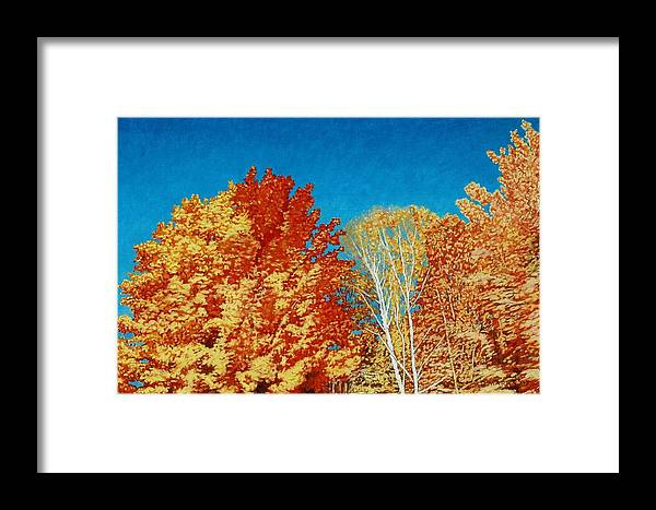 Fall Color Framed Print featuring the painting Fall by Allan OMarra