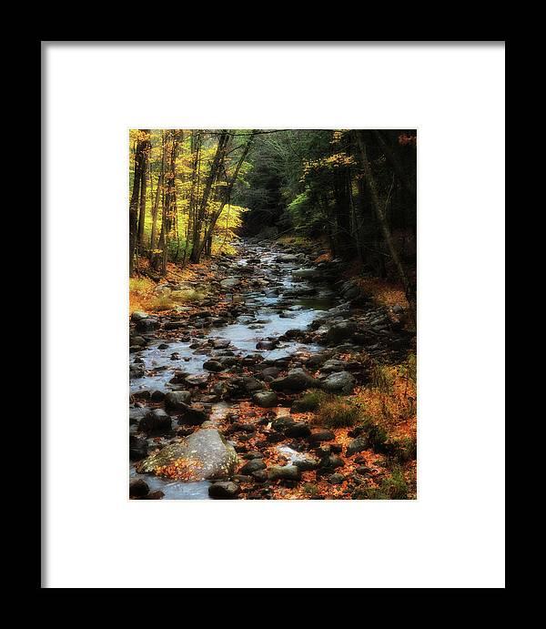 Adirondacks Framed Print featuring the photograph Fall Along Tenant Creek by Michael Hine
