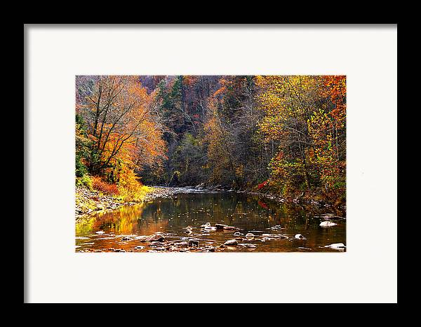 Autumn Framed Print featuring the photograph Fall Color Elk River by Thomas R Fletcher