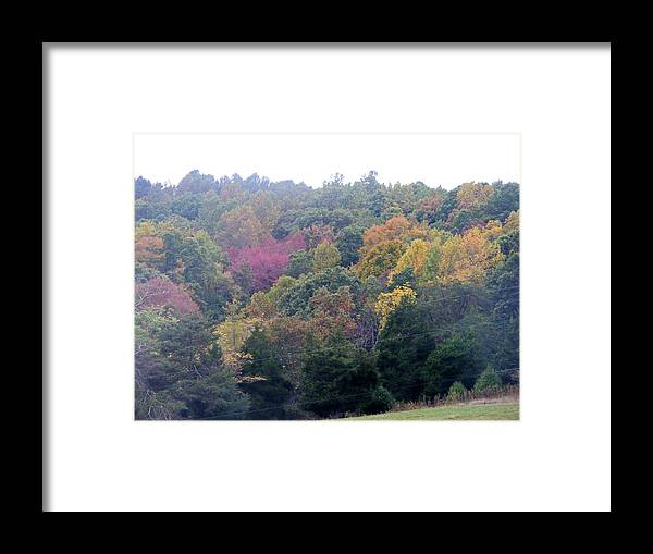 Fall Framed Print featuring the photograph Fall Colors In Rockbridge County by Eddie Armstrong