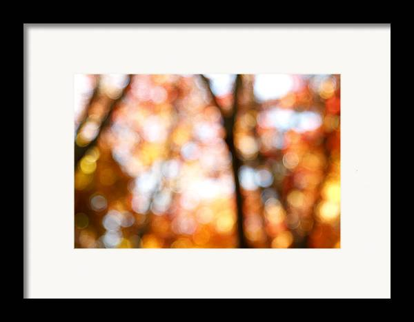 Abstract Framed Print featuring the photograph Fall Colors by Les Cunliffe