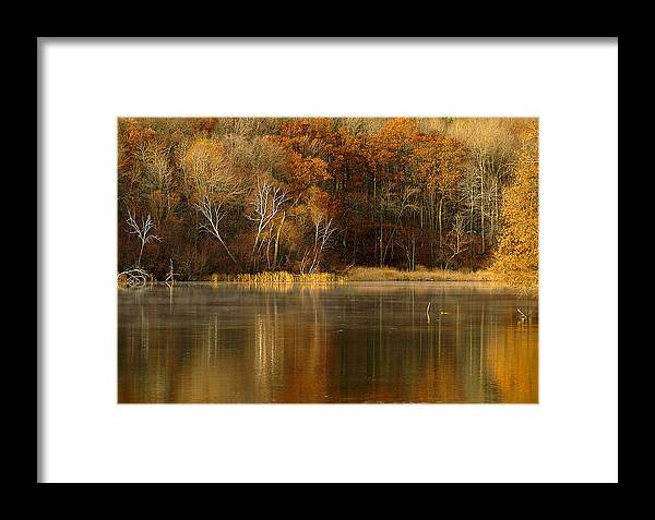 Lake Framed Print featuring the photograph Fall Cove by Thomas Young
