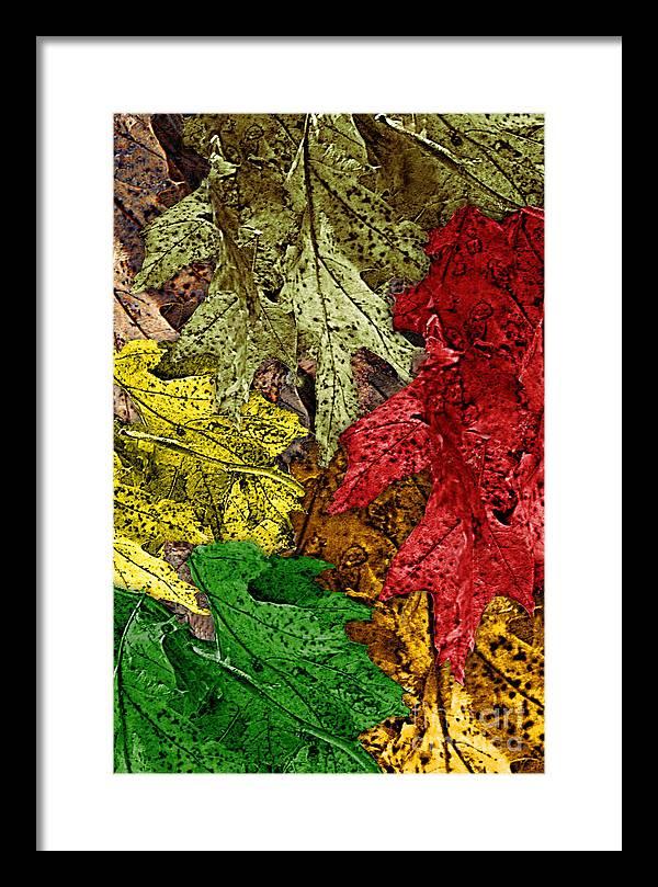 Digital Art Framed Print featuring the digital art Fall Down by Tom Romeo