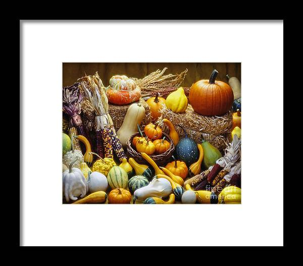 Harvest Framed Print featuring the photograph Fall Harvest by Martin Konopacki