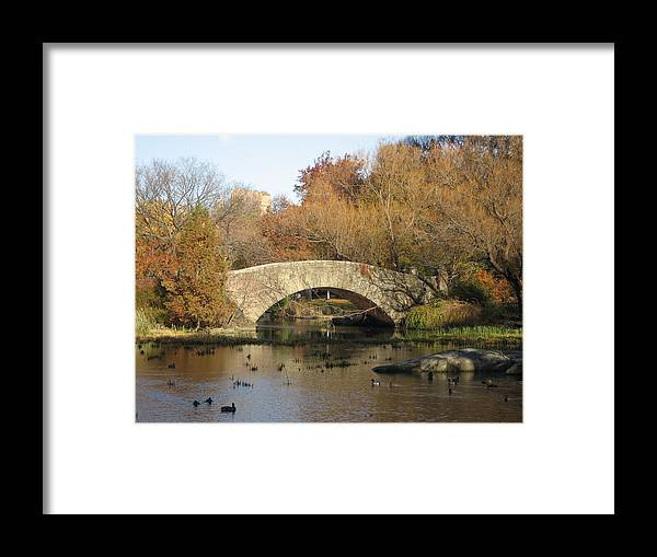Bridge Framed Print featuring the photograph Fall In Central Park by Jennifer Sweet