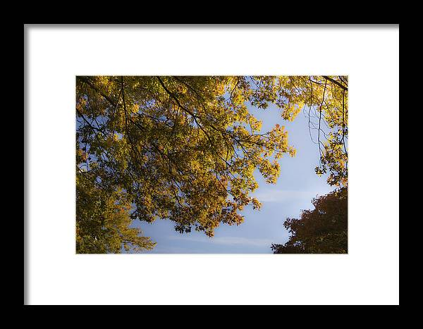 Fall Framed Print featuring the photograph Fall Magic by Teresa Mucha