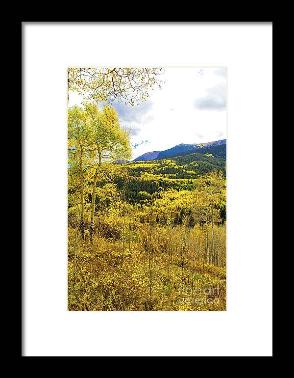 Scenery Framed Print featuring the photograph Fall Mountain Scenery by Steven Parker