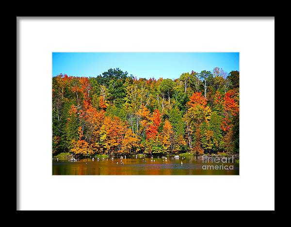 Fall Framed Print featuring the photograph Fall On The Water by Robert Pearson